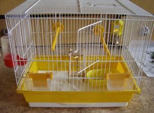уборка в клетке волнистого попугая