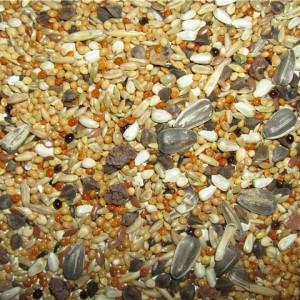 сухой корм для кореллы