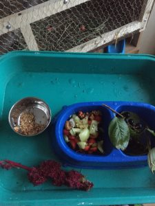 миска с едой