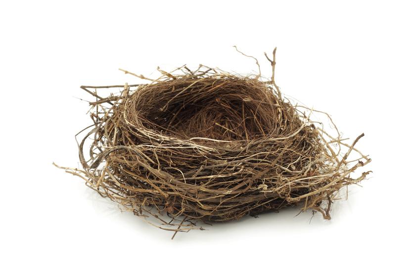 Как сделать гнездо своими руками из соломы